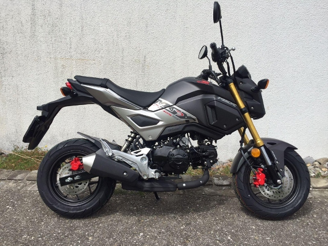 Motorrad kaufen HONDA MSX 125 mit ABS Neufahrzeug