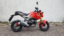 Motorrad kaufen Neufahrzeug HONDA MSX 125 (touring)