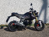 Motorrad kaufen Occasion HONDA MSX 125 (touring)