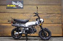 Motorrad kaufen Neufahrzeug SKYTEAM Skymax 125 (touring)