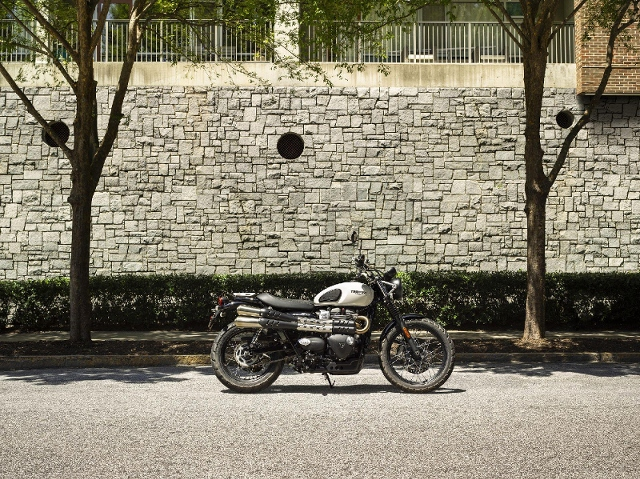 Acheter une moto TRIUMPH Street Scrambler 900 neuve