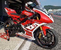 Acheter une moto Occasions TRIUMPH Daytona 675 (sport)
