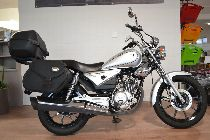 Motorrad kaufen Occasion YAMAHA YBR 125 Custom (custom)
