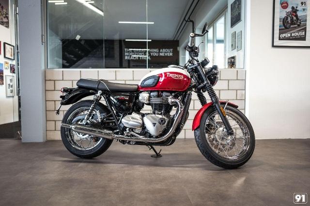 Motorrad kaufen TRIUMPH Bonneville T100 900 Bud Ekins Neufahrzeug