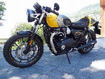 Motorrad kaufen Occasion TRIUMPH Street Cup 900 ABS (retro)