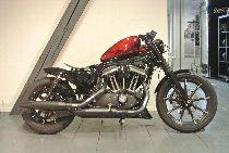 Motorrad kaufen Neufahrzeug HARLEY-DAVIDSON XL 883 N Iron ABS (custom)