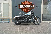 Motorrad kaufen Occasion HARLEY-DAVIDSON XL 1200 NS Sportster Iron (custom)