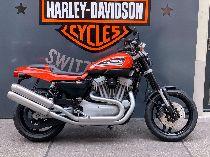 Bild des HARLEY-DAVIDSON XR 1200 Sportster