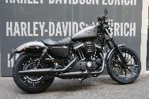 Motorrad kaufen Neufahrzeug HARLEY-DAVIDSON XL 883N Iron ABS (custom)