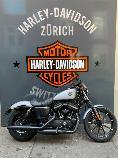 Aquista moto Veicoli nuovi HARLEY-DAVIDSON XL 883 N Sportster Iron (custom)