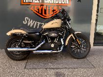 Bild des HARLEY-DAVIDSON XL 883 N Iron ABS