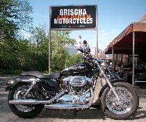Motorrad kaufen Occasion HARLEY-DAVIDSON XL 1200C Sportster Custom ABS (custom)