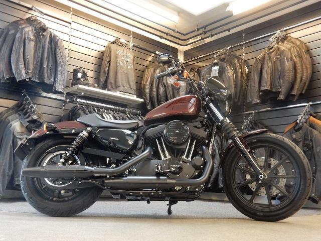 Motorrad kaufen HARLEY-DAVIDSON XL 1200 NS Sportster Iron Neufahrzeug