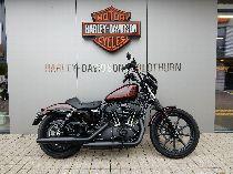 Töff kaufen HARLEY-DAVIDSON XL 1200 NS Sportster Iron Custom