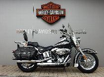 Töff kaufen HARLEY-DAVIDSON FLSTCI 1450 Softail Heritage Classic Custom