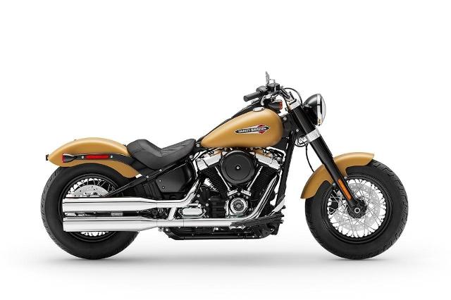 Motorrad kaufen HARLEY-DAVIDSON FLSL 1745 Softail Slim 107 Ref. 6893 Neufahrzeug