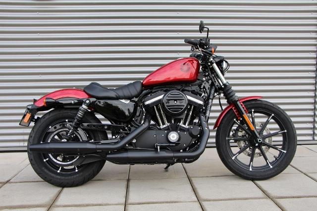 Motorrad kaufen HARLEY-DAVIDSON XL 883 N Sportster Iron Ref. 1029 Neufahrzeug
