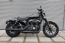 Motorrad kaufen Neufahrzeug HARLEY-DAVIDSON XL 883 N Sportster Iron (custom)