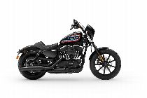 Töff kaufen HARLEY-DAVIDSON XL 1200 NS Sportster Iron Ref. XL1200NS 1586 Custom