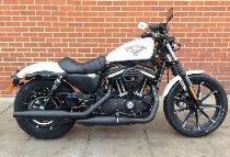 Töff kaufen HARLEY-DAVIDSON XL 883 N Sportster Iron Ref. 8219 Custom