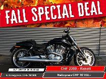 Töff kaufen HARLEY-DAVIDSON VRSCF 1250 V-Rod Muscle ABS Ref. 5065 Custom