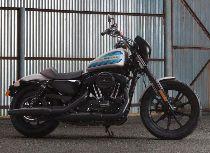 Motorrad Mieten & Roller Mieten HARLEY-DAVIDSON XL 1200 NS Sportster Iron (Custom)