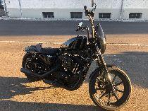 Töff kaufen HARLEY-DAVIDSON XL 1200 NS Sportster Iron ref: 0079 Custom