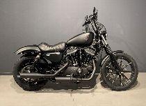 Töff kaufen HARLEY-DAVIDSON XL 883 N Sportster Iron Ref. 7353 Custom
