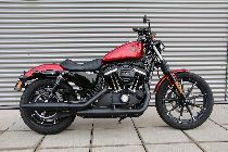 Töff kaufen HARLEY-DAVIDSON XL 883 N Sportster Iron Ref. 1029 Custom