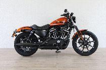 Töff kaufen HARLEY-DAVIDSON XL 883 N Sportster Iron Ref. 2415 Custom