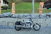 Bild des HARLEY-DAVIDSON VRSCDX 1250 Night-Rod Special ABS Anniversary