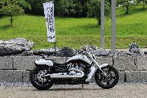 Bild des HARLEY-DAVIDSON VRSCF 1250 V-Rod Muscle ABS