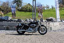 Bild des HARLEY-DAVIDSON XL 1200 L Sportster Low