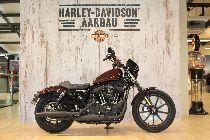 Motorrad kaufen Neufahrzeug HARLEY-DAVIDSON XL 1200 NS Sportster Iron (custom)