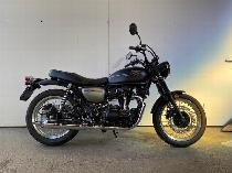 Motorrad kaufen Neufahrzeug KAWASAKI W800 Street (naked)