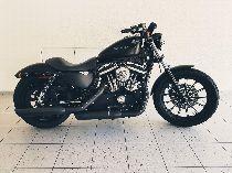 Motorrad kaufen Occasion HARLEY-DAVIDSON XL 883 N Sportster Iron (custom)
