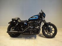 Bild des HARLEY-DAVIDSON XL 1200 NS Sportster Iron