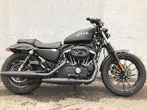 Motorrad kaufen Occasion HARLEY-DAVIDSON XL 883 N Iron (custom)