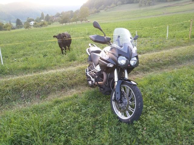 Motorrad kaufen MOTO GUZZI Stelvio 1200 8V Occasion