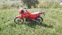 Motorrad kaufen Occasion HONDA NX 650 Dominator (enduro)
