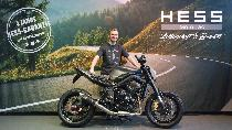 Motorrad kaufen Neufahrzeug TRIUMPH Street Triple 675 (naked)