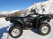 Töff kaufen YAMAHA Quad YFM 660 Grizzly Quad Atv Ssv