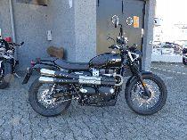 Motorrad kaufen Occasion TRIUMPH Street Scrambler 900 (retro)