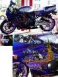 HONDA CBR 900 RR Fireblade Occasion