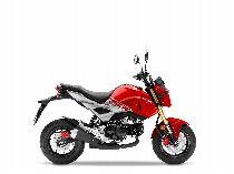 Motorrad kaufen Neufahrzeug HONDA MSX 125 (naked)