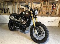 Motorrad kaufen Occasion TRIUMPH Scrambler 900 (naked)