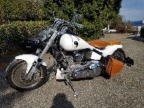 Motorrad kaufen Occasion HARLEY-DAVIDSON FXST 1340 Softail Standard (custom)