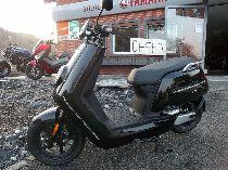 Motorrad kaufen Vorführmodell NIU NS1 (roller)