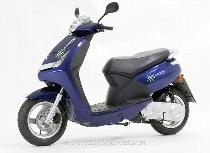 Motorrad kaufen Neufahrzeug PEUGEOT E-Vivacity 50 (45km/h) (roller)