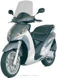 Motorrad kaufen Neufahrzeug PEUGEOT Geopolis 250 (roller)